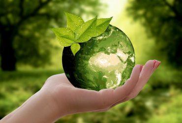 Environmental Health Forms